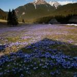 hiking_trekking_Poland_Carpates_Tatras-50