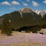 hiking_trekking_Poland_Carpates_Tatras-51