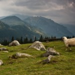 hiking_trekking_Poland_Carpates_Tatras-89